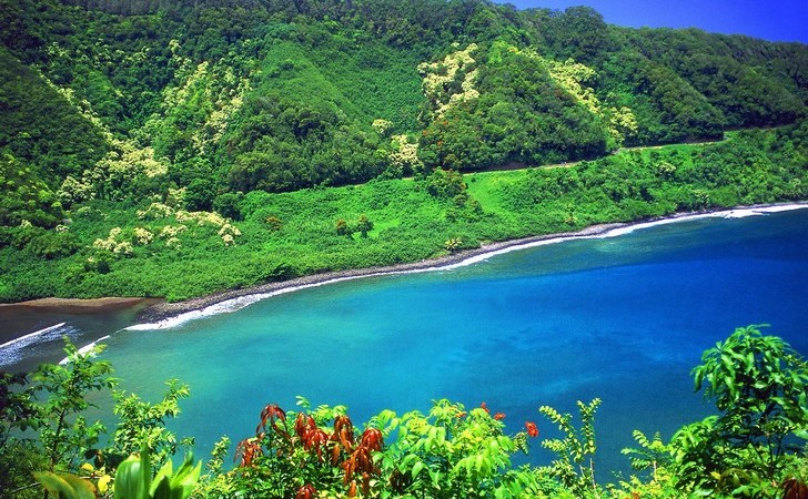 road_to_hana__1_37e
